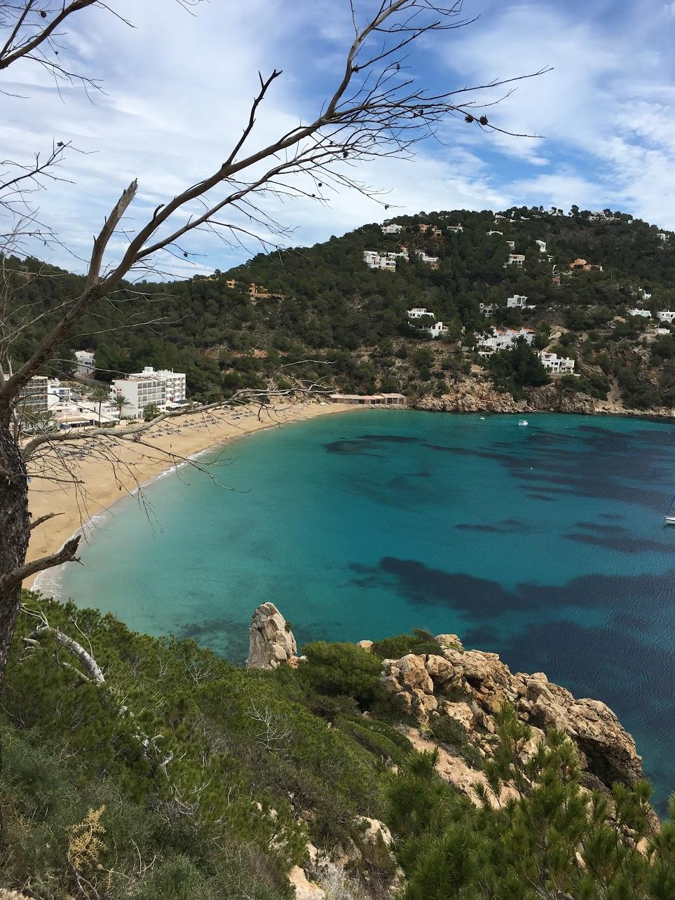 Vegane Restaurants auf Ibiza